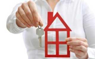Как получить ипотеку по 2 документам
