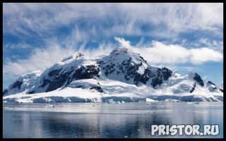 Какие заповедники есть в Арктике