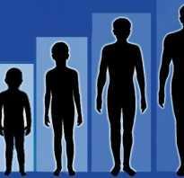 Как увеличить рост человека в 16 лет