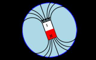 Что называют полюсом магнита
