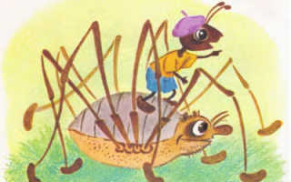Как муравьишка домой спешил