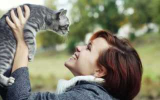 Как понять что ты нравишься кошке