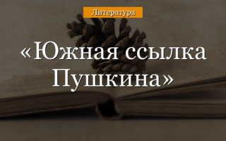 Ссылки пушкина куда и за что кратко
