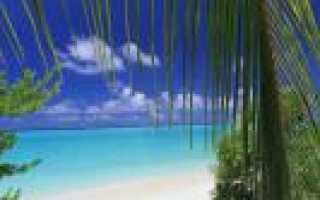 Relax Residence Thoddoo Maldives