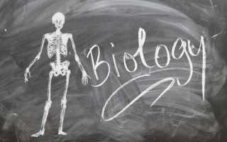 Как выучить биологию за 5 минут