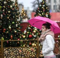 Почему в Москве зимой нет снега