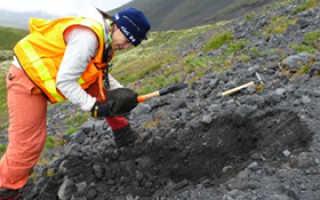Как стать геологом без образования