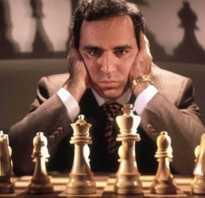 Сколько зарабатывают шахматисты