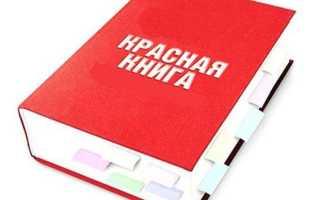 Для чего нужна Красная книга