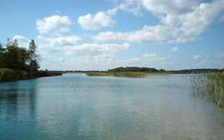 Где можно купаться в Ленобласти